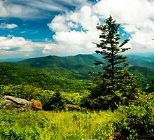 Round Bald Mountain  by Miles Moody