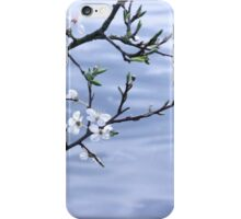 Spring blooms over water iPhone Case/Skin