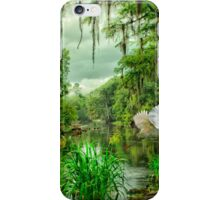 Withlacoochee River Dreaming iPhone Case/Skin