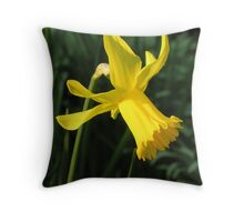 "Daffodil (Narcissus ""Charity May"") in mid-March Throw Pillow"