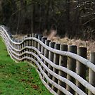 Wobbly Fence  by Simon Pattinson