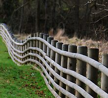 Wobbly Fence  by Simon Pattinson