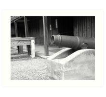 Sutter's Canon Art Print
