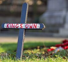 The Kings Own by Beverley Goodwin