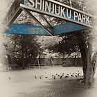 Shinjuku Park by superpope