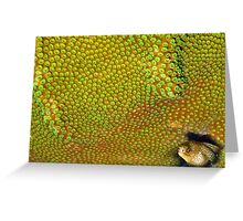Goldentail Eel Greeting Card