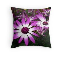 Co-rivalry in the meadow Throw Pillow