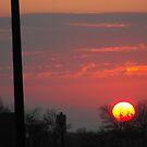 Pink Sunrise by sternbergimages