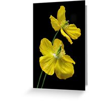 yellow flames Greeting Card
