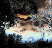 Solarized Cloud Scape by Leslie Robinson