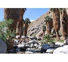 Indian Canyon Photographic Print