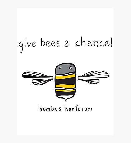 Give bees a chance! Photographic Print