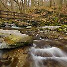 Footbridge in Stock Ghyll, Ambleside by Steve  Liptrot