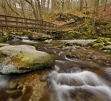 Footbridge in Stock Ghyll, Ambleside by Steve  Liptrot