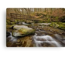 Footbridge in Stock Ghyll, Ambleside Canvas Print