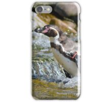 Penguin in the Water iPhone Case/Skin