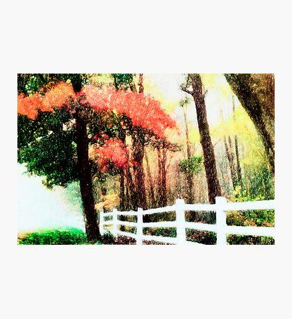 Nature Paintings-Fall Fantasy Photographic Print