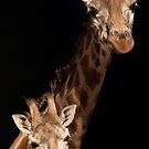 Mother And Child by Franco De Luca Calce