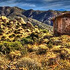 Monolith on the Trail at Sears-Kay Ruins by Roger Passman