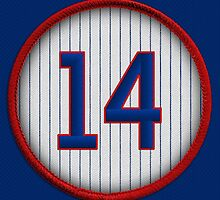 14 - Mr. Cub by DesignSyndicate