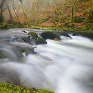 Dartmoor: The River Walkham at Grenofen by Rob Parsons