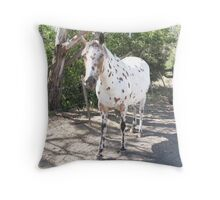 Leopard Appaloosa Mare Throw Pillow