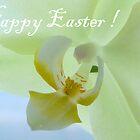 Easter Card by HELUA