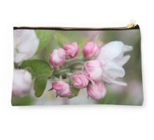 Apple blossom time .... Studio Pouch