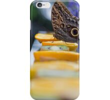 A new beginning iPhone Case/Skin