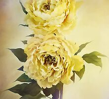 Yellow Peonies by Stephanie Frey