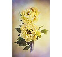 Yellow Peonies Photographic Print