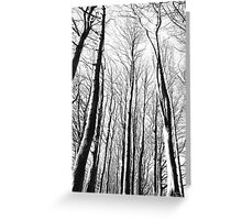 Towered Greeting Card