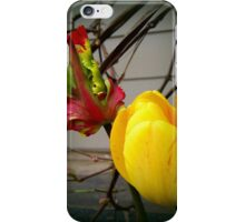 Two different looks for the price of one iPhone Case/Skin