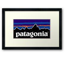 Patagonia Framed Print