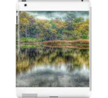 Reflections at High Tide iPad Case/Skin