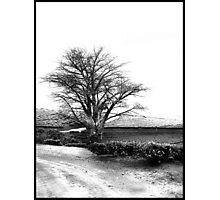 Break Away Photographic Print