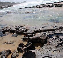 Champagne Pools, Fraser Island by Matthew Reid