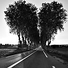 Road To My Broken Heart by Luis Ferreiro
