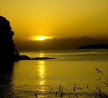 Sunrise Butterfields Beach, Stewart Island, New Zealand by Les Pullen