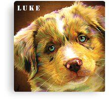 Little Luke Canvas Print