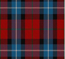 00441 Baillie of Polkemment Red Tartan by Detnecs2013