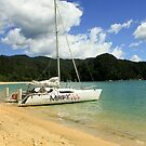 Sailing in Abel Tasmin by Jennifer Vollebregt