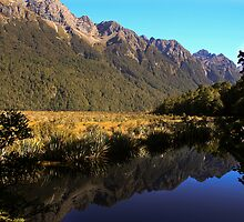 Mirror Lake, New Zealand by Jennifer Standing