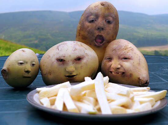 Potatoes eye up Fries by Davideo