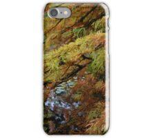 Autumn in the Fall iPhone Case/Skin