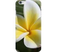 Fabulous Frangipani iPhone Case/Skin