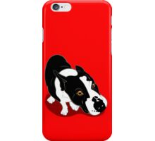 Mr Bull Terrier  iPhone Case/Skin