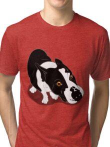 Mr Bull Terrier  Tri-blend T-Shirt