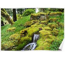Spring wet green moss covered rocks and green grasses, trees. Nature garden photography. Poster