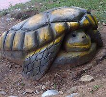 wood turtle by navigatorsteel